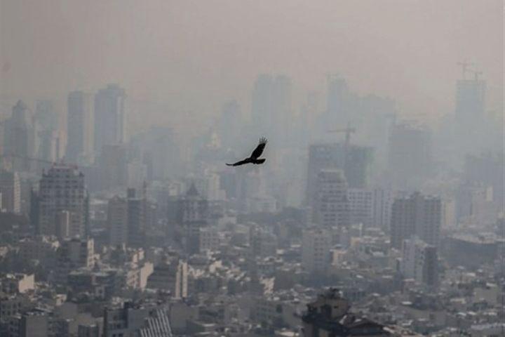 """بررسی خسارت های آلودگی هوا در """"مرورگر 1332"""""""