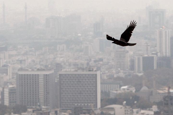 «پشت پلک صبح» بررسی می کند: راهکارهای کاهش آلودگی هوا