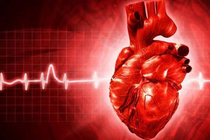 بیماری هایی که باعث ناراحتی قلب می شود