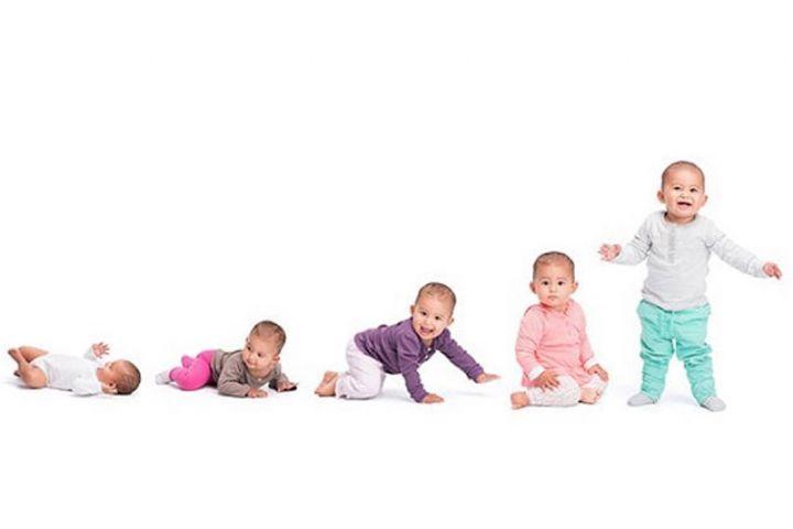 """رشد کودک در سال اول در """"درناهای کاغذی"""""""