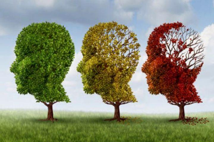 آلزایمر و همه باید و نبایدهای تغذیه ای آن