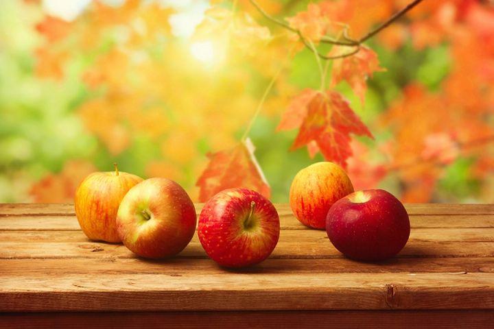 با خواص میوه های پاییزی آشنا شویم