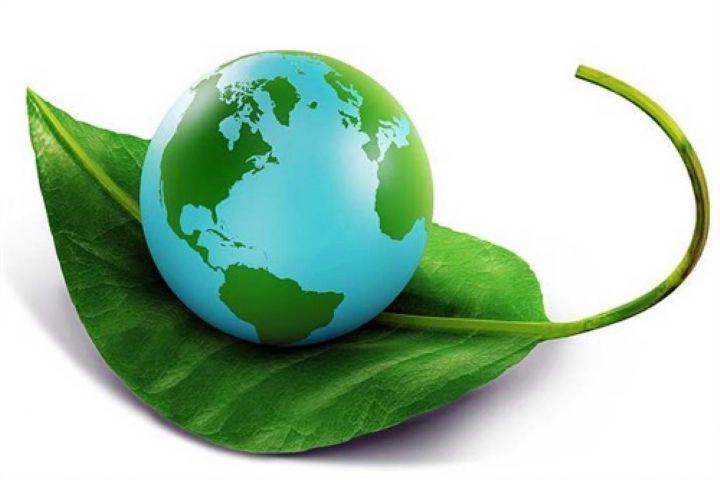 اهمیت آموزش حفاظت از محیط زیست به کودکان