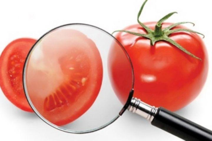اهمیت توجه به استاندارد در صنعت غذا