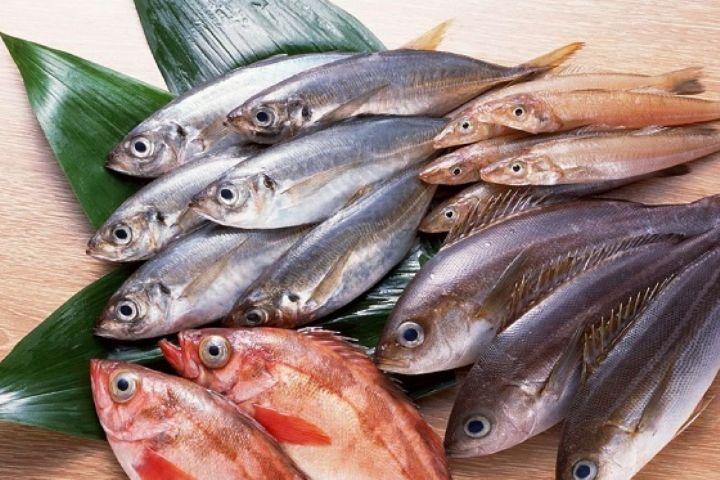 """نکات مهم برای خرید ماهی در """"ساده مثل سلامت """""""