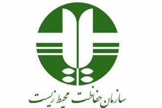 معاون رییسجمهور و رئیس سازمان حفاظت محیط زیست در رادیو تهران