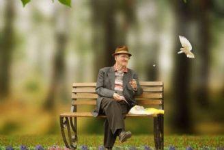 سالمندان و مراقبتهای ضروری در هنگام سفر