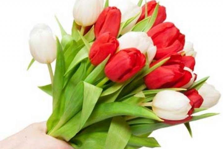 «پشت پلک صبح» پاسخ می دهد: ضرورتهای قدرشناسی چیست؟