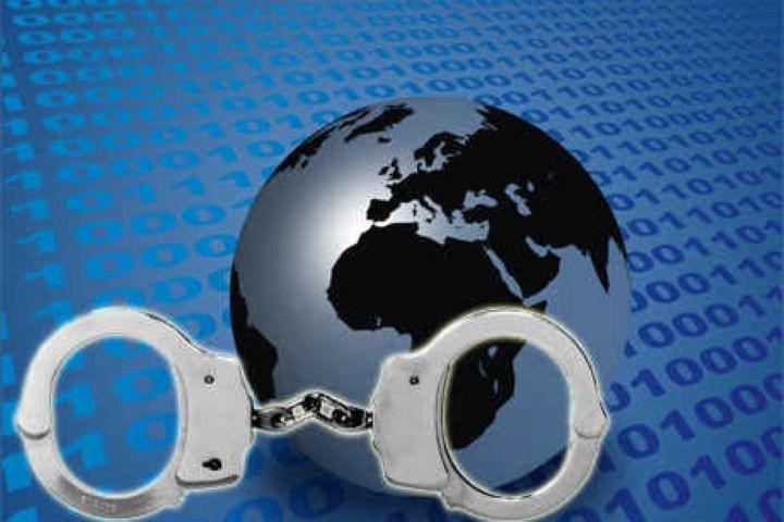بررسی ویژه  جرائم محیط زیستی درفضای مجازی