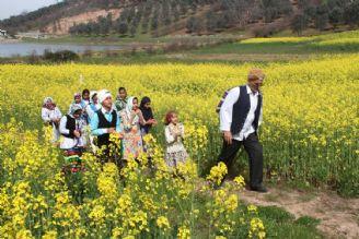 سفر به استان گلستان