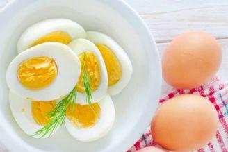 تخم مرغ محلی با تخم مرغ معمولی خواص تغذیه ای متفاوتی دارند؟