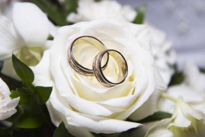 خجالتی بودن همسران روی خط «حلقه گمشده»