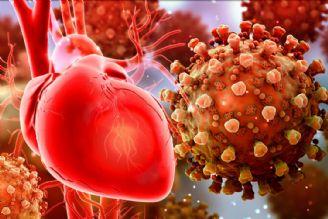 تاثیر ویروس کرونا بر قلب