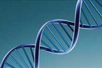 ژنتیک اجتماعی