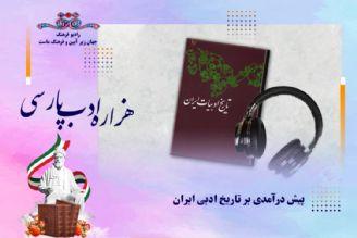 هزاره ادب پارسی و پیش درآمدی بر تاریخ ادبی ایران