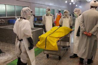 روایتی متفاوت از رسیدگی به بیماران كرونایی تا تغسیل اموات توسط جهادگران