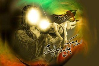روز هفتم محرم/ پاره قلب رباب، كوچكترین كربلایی عشیره عشق