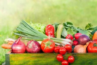 رتبه 79 ایران در تولید محصولات ارگانیك در بین 183 كشور