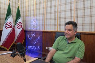 سینمای ایران ورشكسته و دولتی است