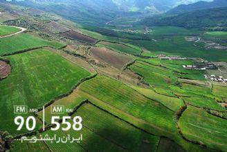 از آب و هوای بارانی تا گسترش صنایع چوب در برخی استان ها