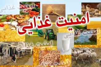 عدم بهره وری از منابع، باعث به خطر افتادن امنیت غذایی می شود