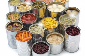 غذای خانگی سالم تر از غذاهای بین راهی است/ سعی كنید در سفر از كنسروهای پروتئینی استفاده نكنید