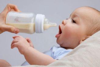 افتتاح 10 بانک شیر در سال جاری