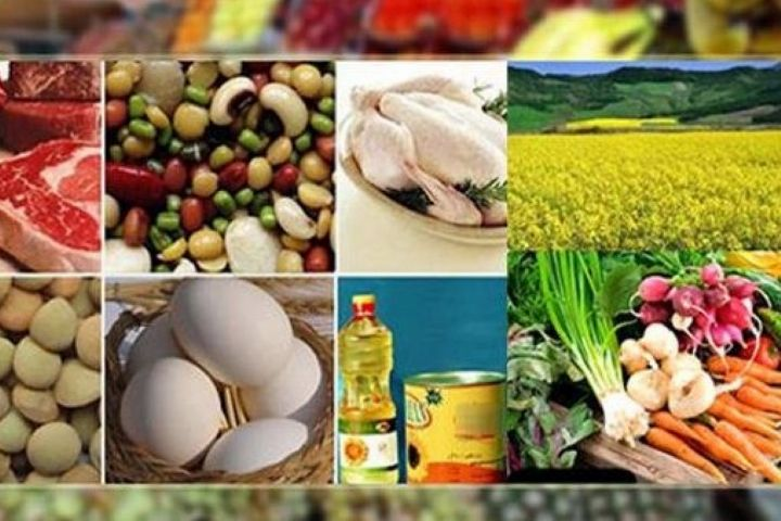 دولت برای تامین غذای مردم برنامه ریزی دارد