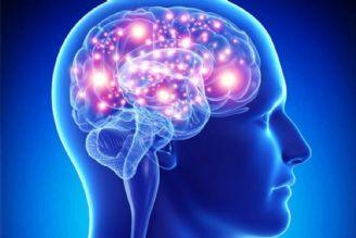 تلاقی ژنتیک و محیط، سبب ایجاد بیماری مغز