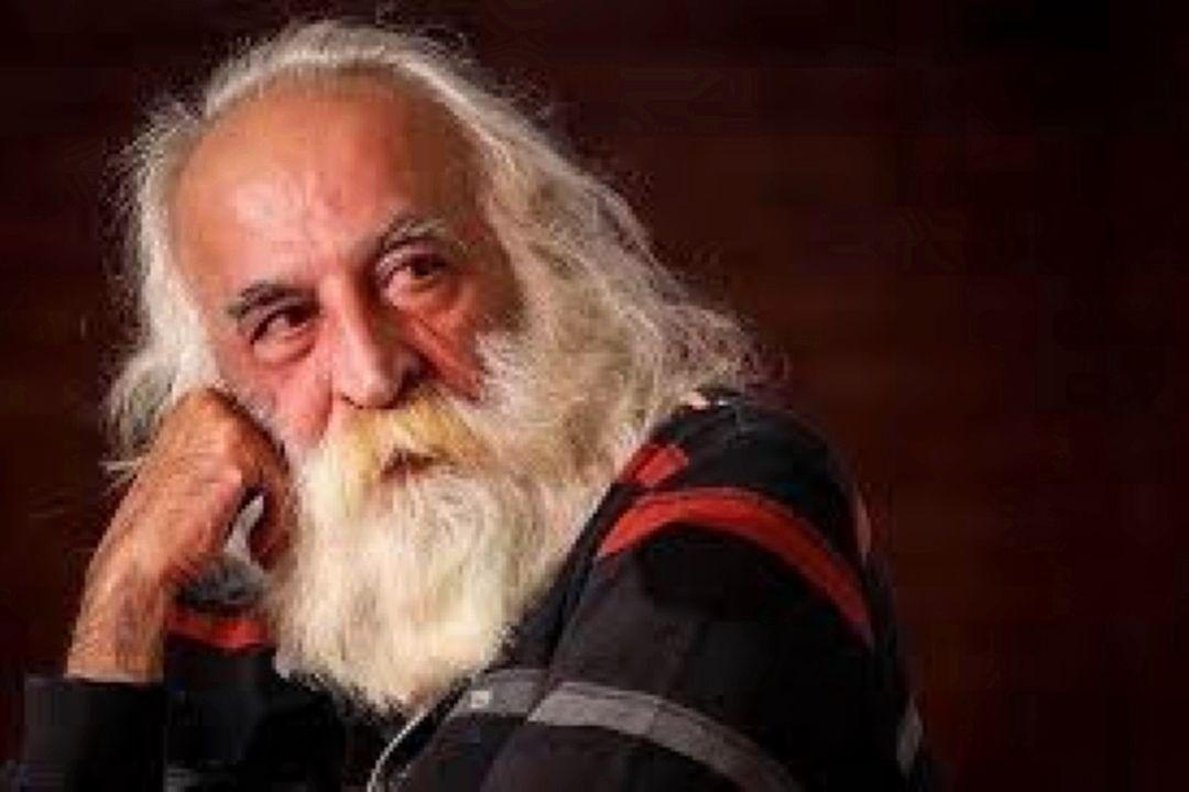 محمد رضا لطفی