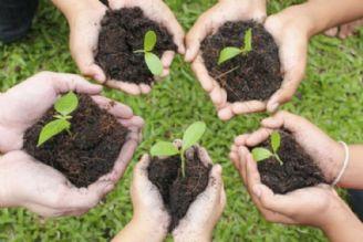 زمینه بروز رفتارهای محیط زیستی فراهم نشده است
