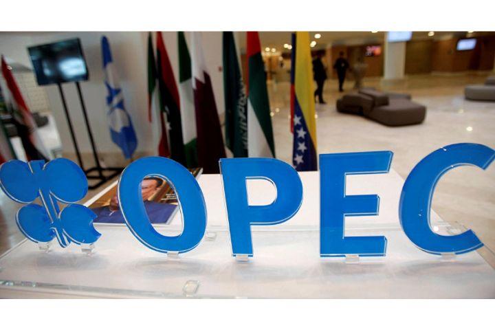 کشورهای عضو اپک برای عبور از بحران کاهش قیمت نفت ، باید تصمیمات سختی بگیرند