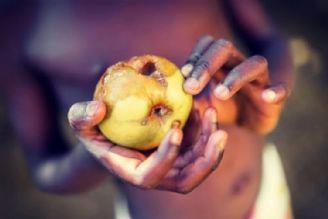 غذا؛ تبدیل به اهرم فشار نظام سلطه شده است