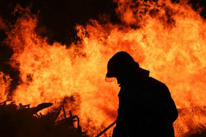 دلیل اصلی آتشسوزی چیتگر هنوز برای آتشنشانی مشخص نیست