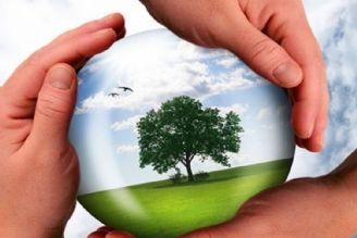 دولت نمیتواند حمایت درستی از محیط زیست داشته باشد