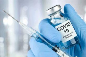 آزمایش واکسن کرونا بر روی انسان در سنگاپور