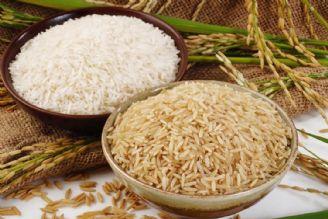 ارز نیمایی، تقاضا برای برنج وارداتی را كاهش داده است