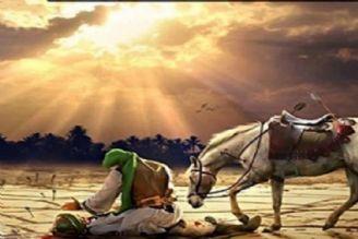 نگاه عرفانی به انسان كامل و حادثه عاشورا در «سوفیا»