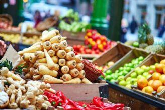 عمده واردات كشور مربوط به محصولات كشاورزی و غذایی است