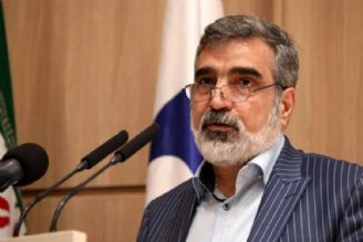گزارش جدید مدیركل آژانس بین المللی اتمی درباره ایران مثبت است