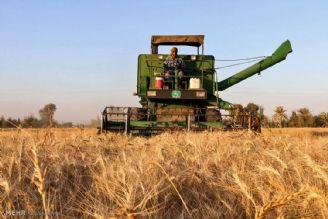 نیمی از ماشینآلات کشاورزی فاقد بیمه هستند