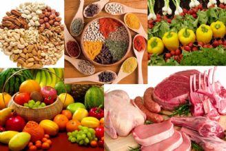 سواد تغذیهای باید از مسیر دولت ترویج شود