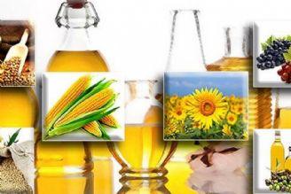 خیز وزارت جهاد برای خودکفایی 50 درصدی در تولید دانههای روغنی