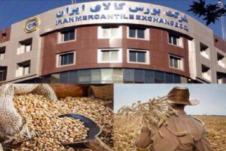 بورس كالا بسترخوبی برای عرضه محصولات كشاورزی است