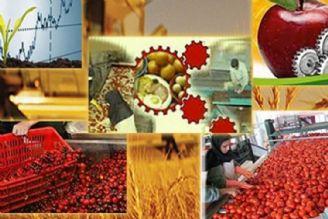 «روستا بازار»؛طرح عرضه مستقیم محصولات کشاورزی به خانوادههای کمدرآمد