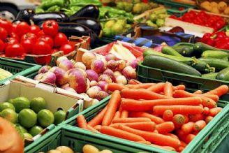 خرید تضمینی برای همه محصولات کشاورزی ضروری است