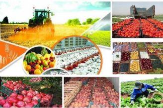 بررسی سیاست خرید تضمینی محصولات کشاورزی