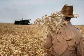 نداشتن منابع مالی برای خرید گندم در راستای انحراف اذهان است