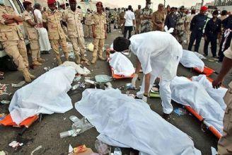 باید برای رسیدگی به جنایت عربستان در فاجعه منا، در دادگاههای بین المللی شکایت کنیم