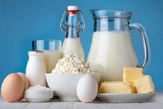 سرنوشت مرغ و تخممرغ در انتظار شیر و لبنیات